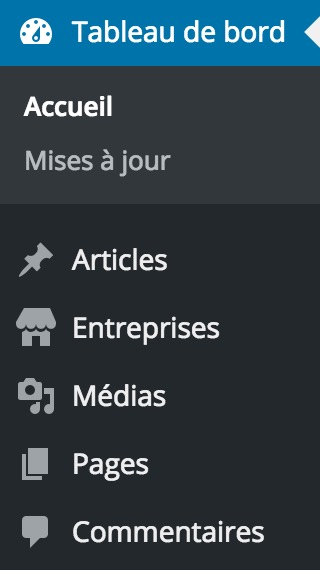 CPT personnalise dashicons